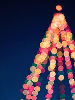 holiday tree lightings _ by tim-mossholder